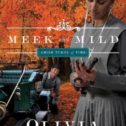 Review: Meek and Mild (Amish Turns of Time series) by Olivia Newport