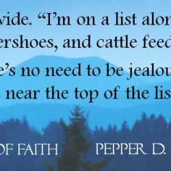 Cover Reveal (Plus a Giveaway!) : A Twist of Faith by Pepper D. Basham