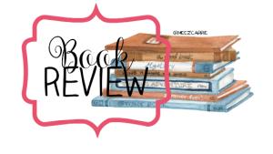book review RIMSP