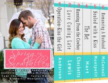 Book Spotlight (and a Giveaway!): Spring in Snow Valley anthology