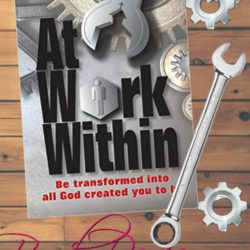 Book Review: At Work Within by Rick Osborne