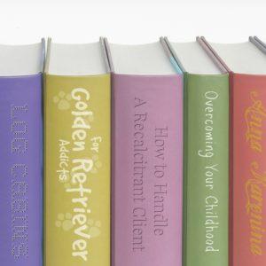 dru's books
