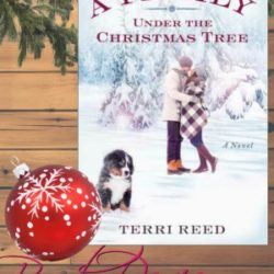 Book Review (and a Giveaway!): A Family Under the Christmas Tree by Terri Reed