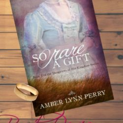 Book Review (and a Giveaway!): So Rare a Gift by Amber Lynn Perry