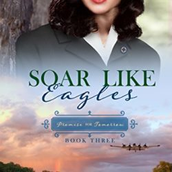 Book Review (and a Giveaway): Soar Like Eagles by Terri Wangard