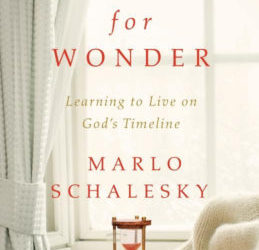 Book Review (and a Giveaway!): Waiting for Wonder by Marlo Schalesky