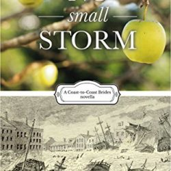 Book Review (and a Giveaway!): No Small Storm by Anne Mateer