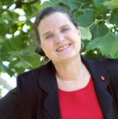 Author Interview: Lin Stepp and Lost Inheritance
