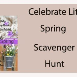 Celebrate Lit Spring Scavenger Hunt (and a Giveaway!): Q&A with Rachel J. Good