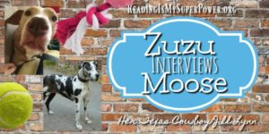 Zuzu Interviews: Moose from Jill Lynn's Her Texas Cowboy (plus Giveaway info!)