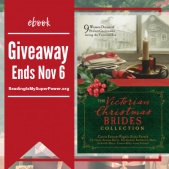 Author Interview (and a Giveaway!): Erica Vetsch & 'The Perfect Christmas'