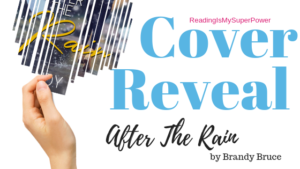 Cover Reveal (and a Giveaway!): After the Rain by Brandy Bruce