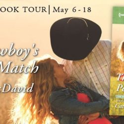Blog Tour Grand Finale (and a Giveaway!): The Cowboy's Perfect Match by Cathy McDavid