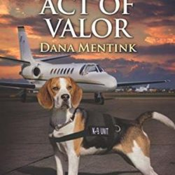 Book Review (and a Giveaway!): Act of Valor by Dana Mentink