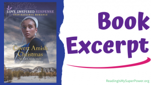 Book Spotlight (and a Giveaway!): Covert Amish Christmas by Mary Alford