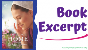 Book Spotlight (and a Giveaway!): A Wish for Home by Jo Ann Brown