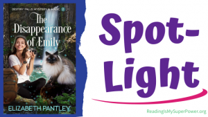 Book Spotlight (and a Giveaway!): The Disappearance of Emily by Elizabeth Pantley