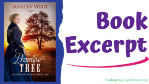 Book Spotlight (and a Giveaway!): The Promise Tree by Janalyn Voigt